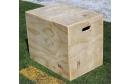 Large Box Affiliate Gym Package - 3n1 Plyo Box
